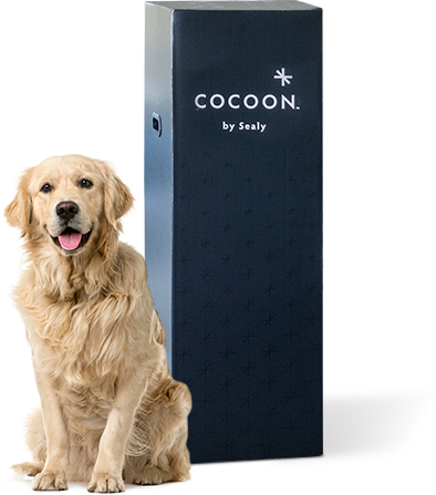 sealy_cocoon_mattress_review