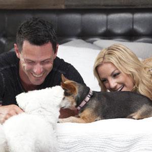 Furry Animal Friends on mattress